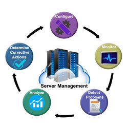 IT Server Management